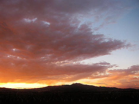 101915 Sunset by Carol Welsh