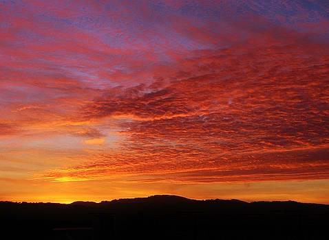 1023152 Sunset by Carol Welsh