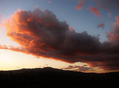 102815 Sunset by Carol Welsh