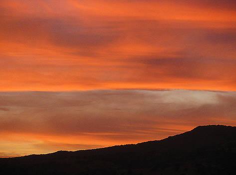 10815 Sunset by Carol Welsh