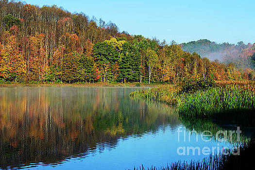 Autumn Mist on Lake by Thomas R Fletcher