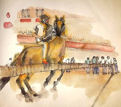 Siena and their Palio album by Debbi Chan