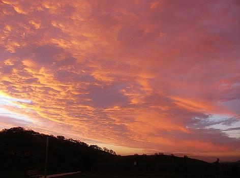 128162 Sunrise by Carol Welsh