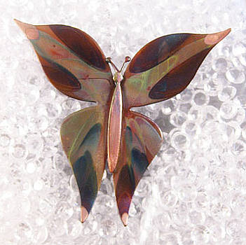 1352 Med Butterfly by Dianne Brooks