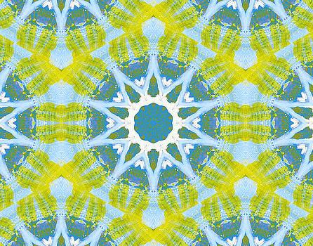 Pattern and Optics Art by Ricki Mountain