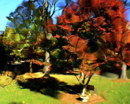 Natural Impressionism by Charles Shedd