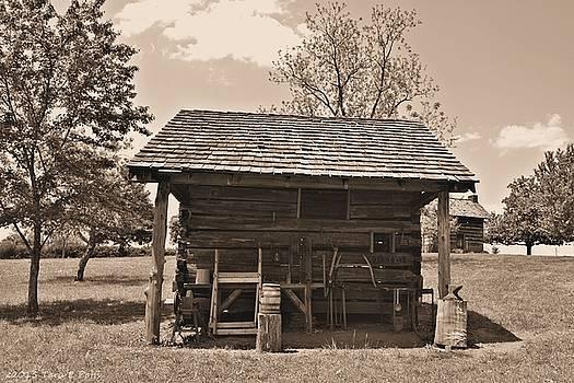 1800's Tool House by Tara Potts