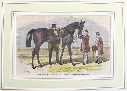 1860 British Horse Print, Matted #2 by Unknown