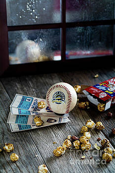 1982 World Series by Deborah Klubertanz
