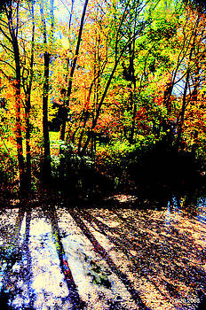 Autumn Colors by Aron