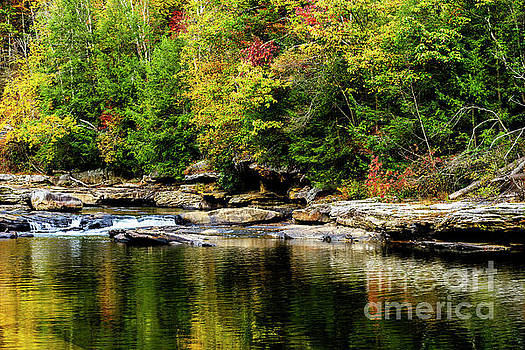 Autumn Middlle Fork River by Thomas R Fletcher