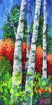 Birch Trees  by Art OLena