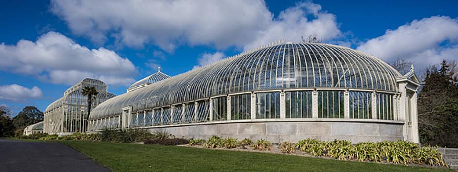Martina Fagan - Botanical House