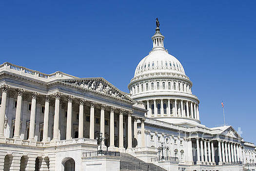 Patricia Hofmeester - Capitol in Washington