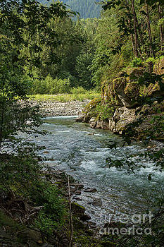 Coqhuihalla River, BC, Canada by Patricia Hofmeester