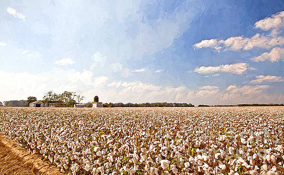 Scott Pellegrin - Cotton Field
