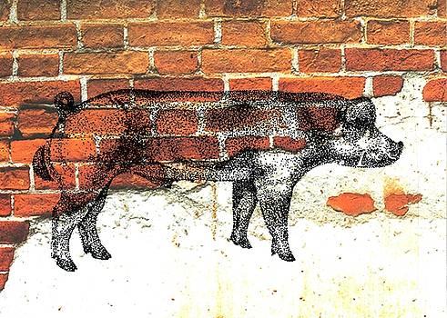 Danish Duroc Boar by Larry Campbell
