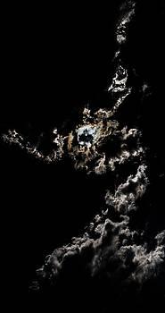 Steven Poulton - Exposing for the Light