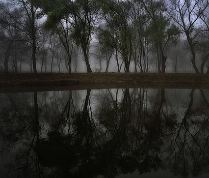 Foggy day by Peter Fodor