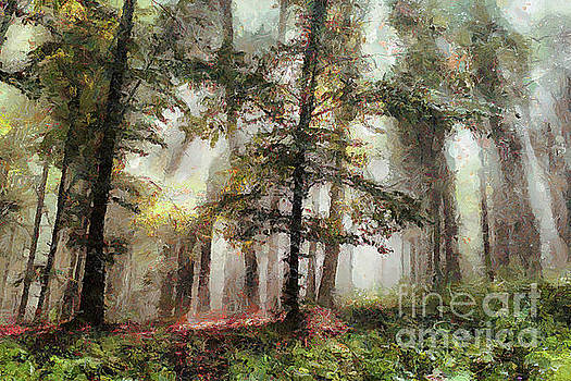 Foggy forest tree paint by Odon Czintos
