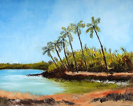 Hawaii by Scott Hoke