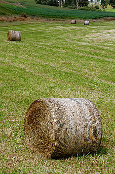 Hay bales by Les Cunliffe