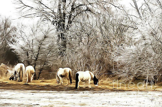 Horses on the farm by Odon Czintos