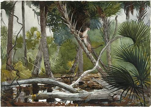 In the Jungle by Winslow Homer