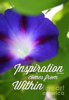 Inspiration  by Marlene Williams