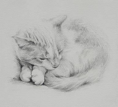 Kitty by Rachel Christine Nowicki