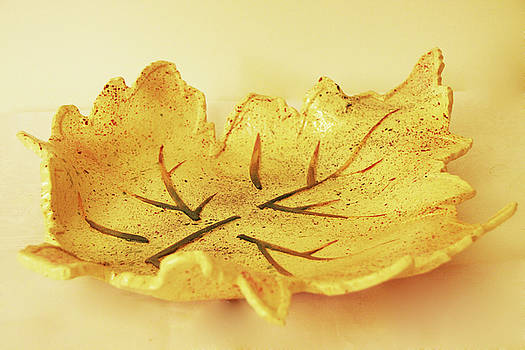 Leaf Plate2 by Itzhak Richter