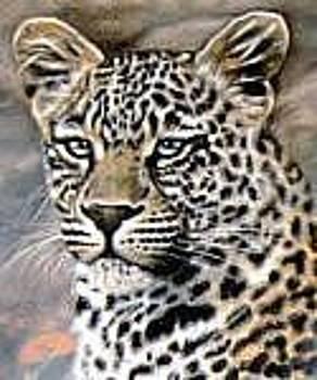 Leopard by Riek  Jonker
