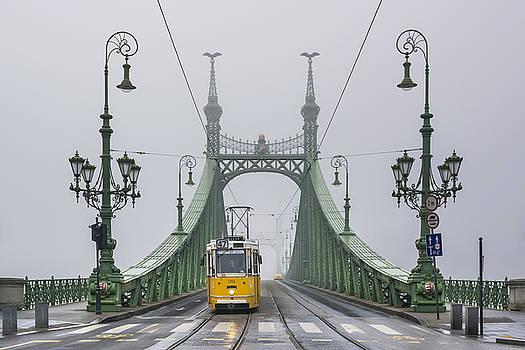 Liberty Bridge Budapest Hungary by Ayhan Altun