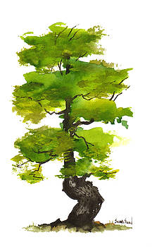Little Tree 12 by Sean Seal