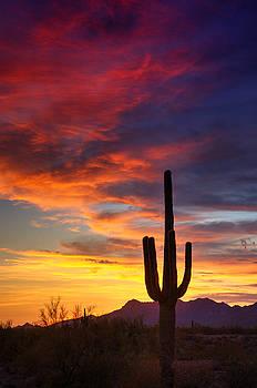 Saija  Lehtonen - Painted Desert Skies