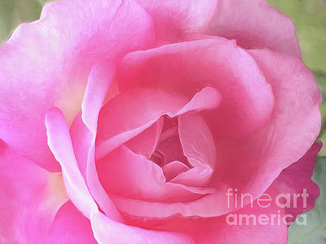 Pink by Margie Hurwich