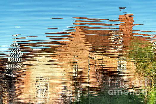 Svetlana Sewell - Reflections