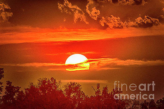 Sunset by Pravine Chester