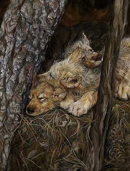 The Pine Needle Bed by Nonie Wideman