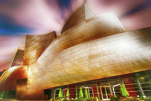Walt Disney Concert Hall by Joseph Hollingsworth