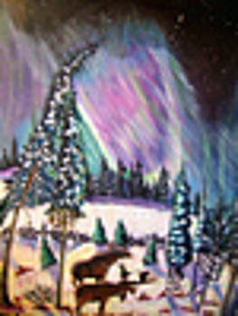 2 witness the Aurora Borealis by D E BArtley