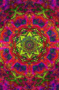 20110314-Psychedelic-Pi-Day-v6 by Danny Maynard