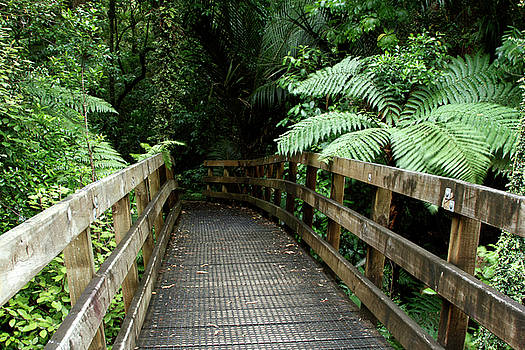 Walking trail by Les Cunliffe