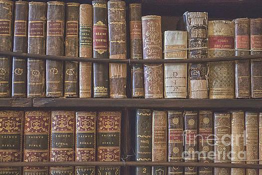 Patricia Hofmeester - Antique books