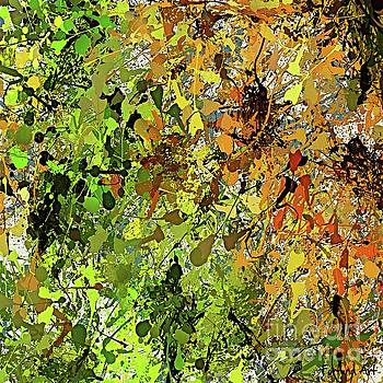 Autumn Colors by Dragica Micki Fortuna