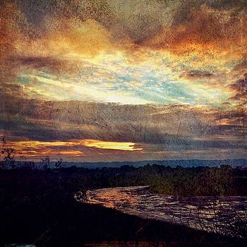 Baylands Sunset by Anne Thurston