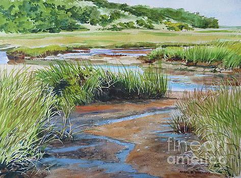 Bayside Marsh by Karol Wyckoff