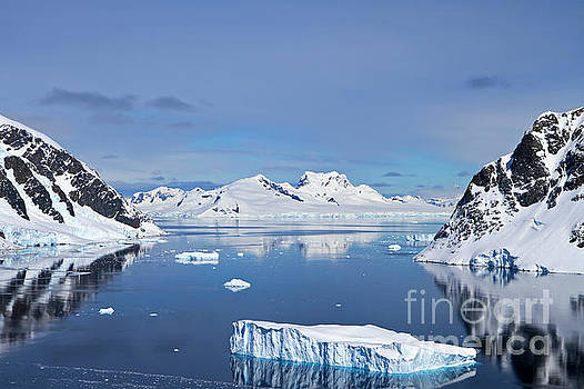 Danco Island, Antarctica by Lilach Weiss