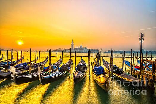 Gondolas in Venice - Italy  by Luciano Mortula