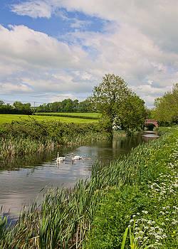 Grand Western Canal by Pete Hemington